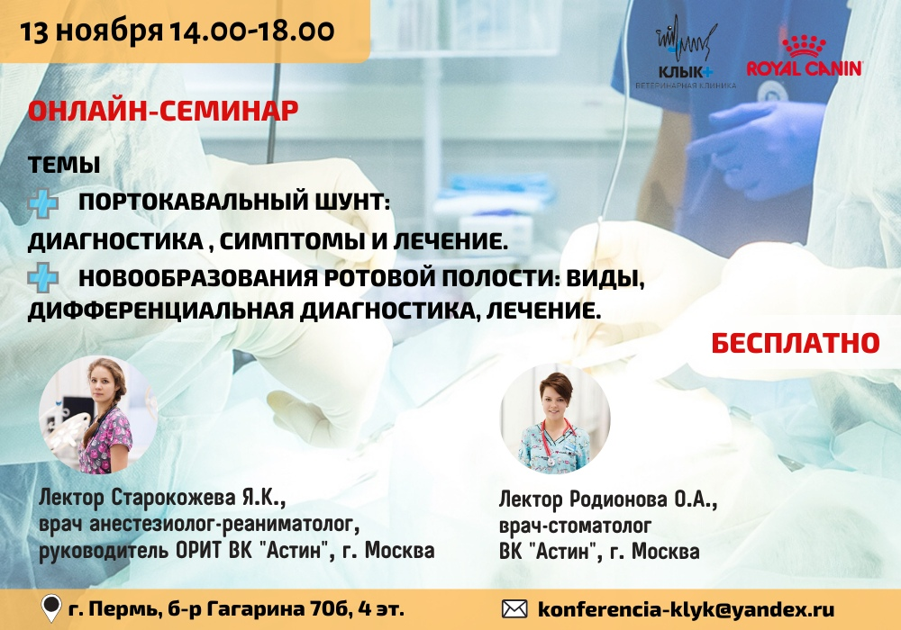 Онлайн-семинар с Royal Canin 13 ноября